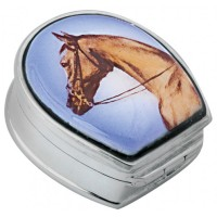 PB301   Ari D Norman Sterling Silver Horse Picture Pill Box
